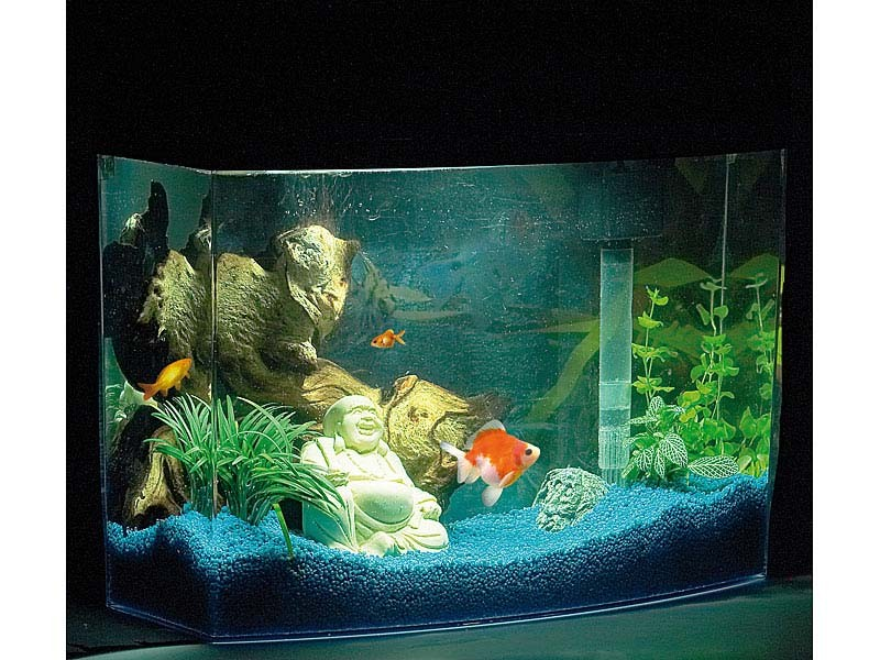 panorama aquarium 20l jungfische garnelen komplett ebay. Black Bedroom Furniture Sets. Home Design Ideas